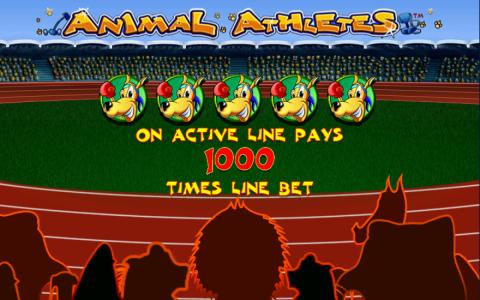 animal-athletes-paylines