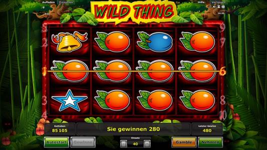 Toller Gewinn im Stargames Spiel Wild Thing